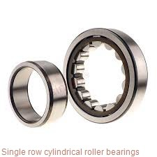 N244M Single row cylindrical roller bearings