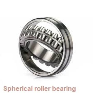 238/1000CAF3/W3 Spherical roller bearing